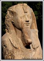 [Photo] Sphinx de Memphis